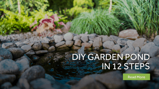 DIY Garden Pond In 12 Steps