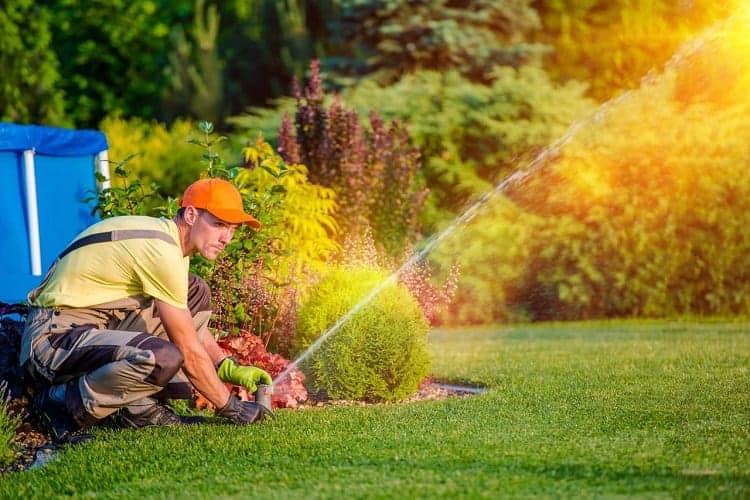 Man Ajusting Lawn Sprinklers