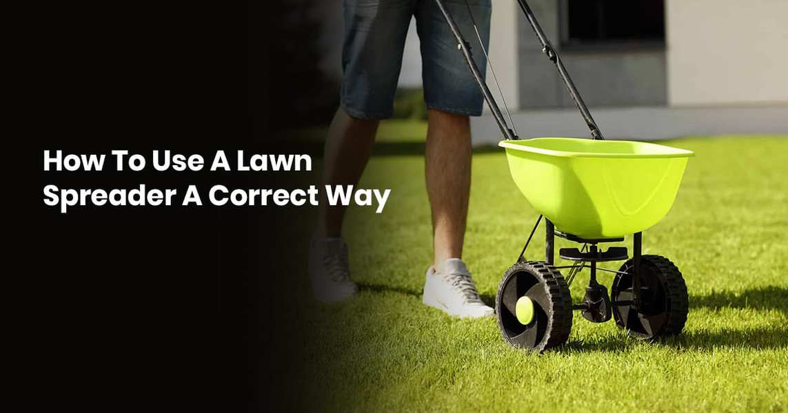How To Use A Lawn Spreader A Correct Way