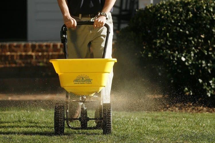 Applying a Lawn Fertilizer
