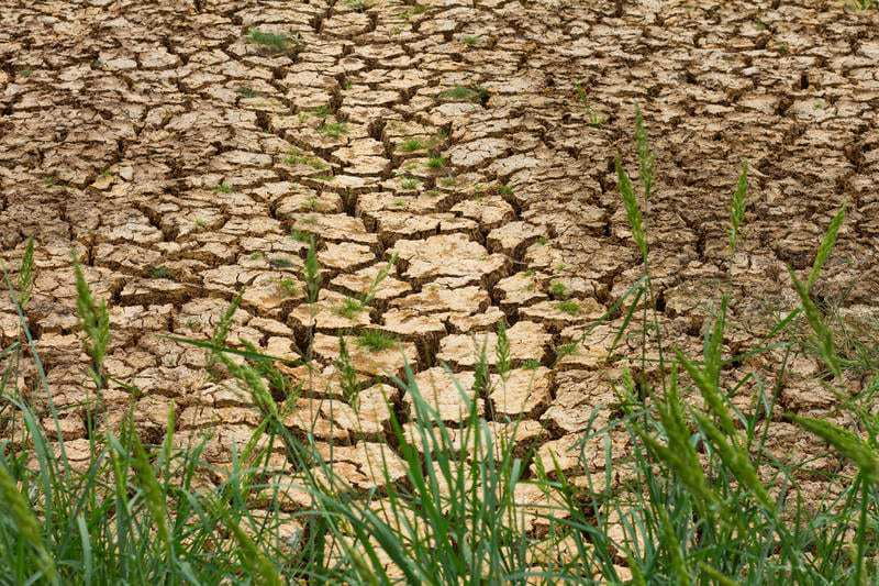 Soil PH affected by climate