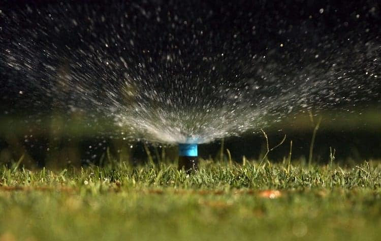 Watering Lawn By Night