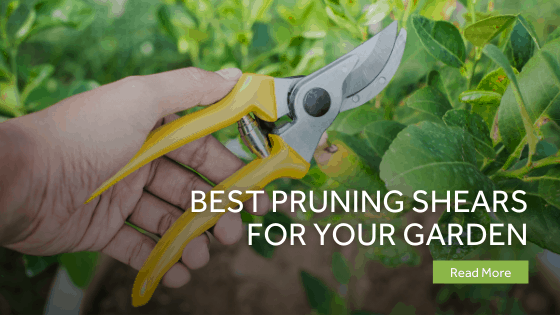 Best Pruning Shears For Your Garden