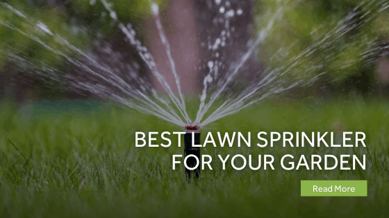 Best Lawn Sprinkler For Your Garden